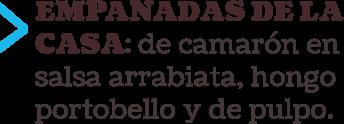 camp_empanadas_tipo